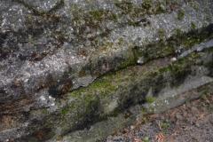 renobud-pomnik-przed-07